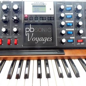 Moog Voyager Presets | Synthmob